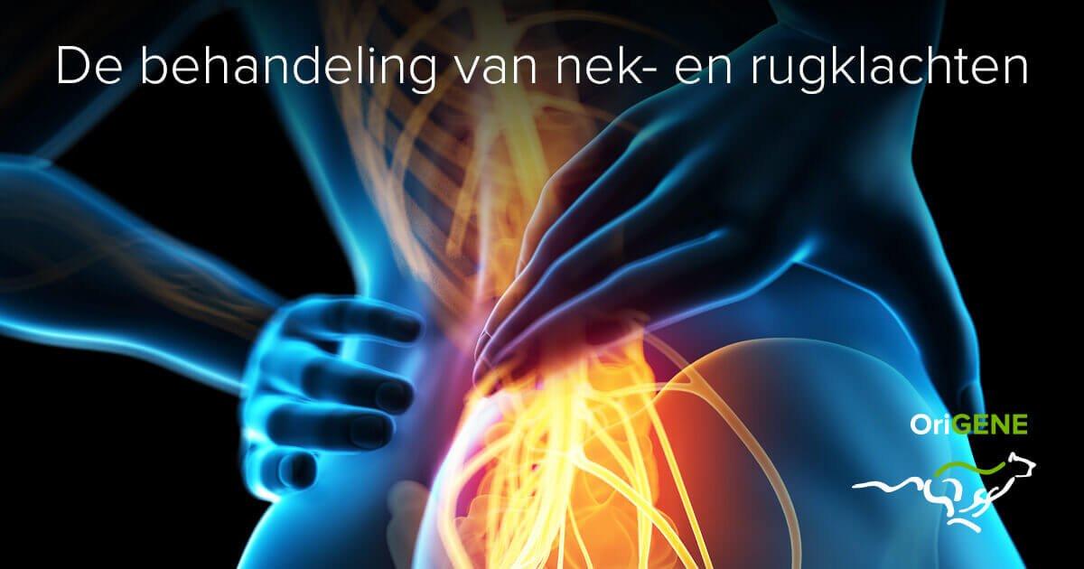 Pijn in de onderrug: Er is een succesvolle behandeling