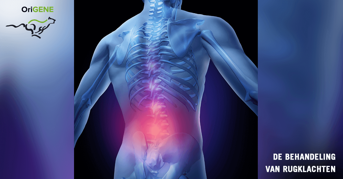 Osteoporose: wat is het en wat kan je er aan doen?